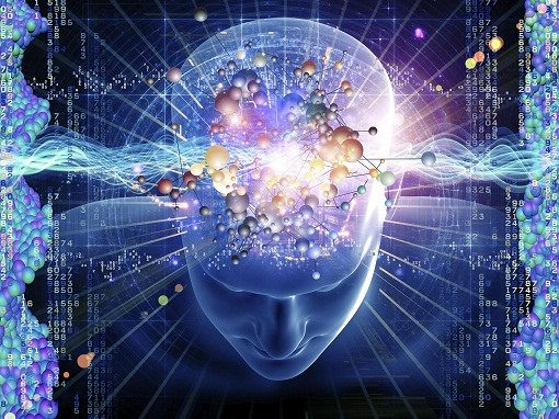 Collaborative leadership, brain science